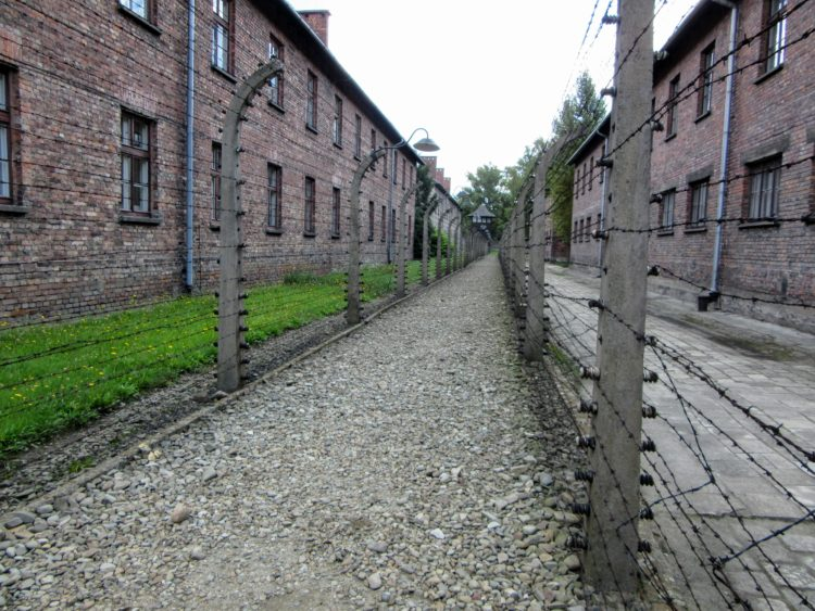 Taking a Tour of Auschwitz. | My Meena Life