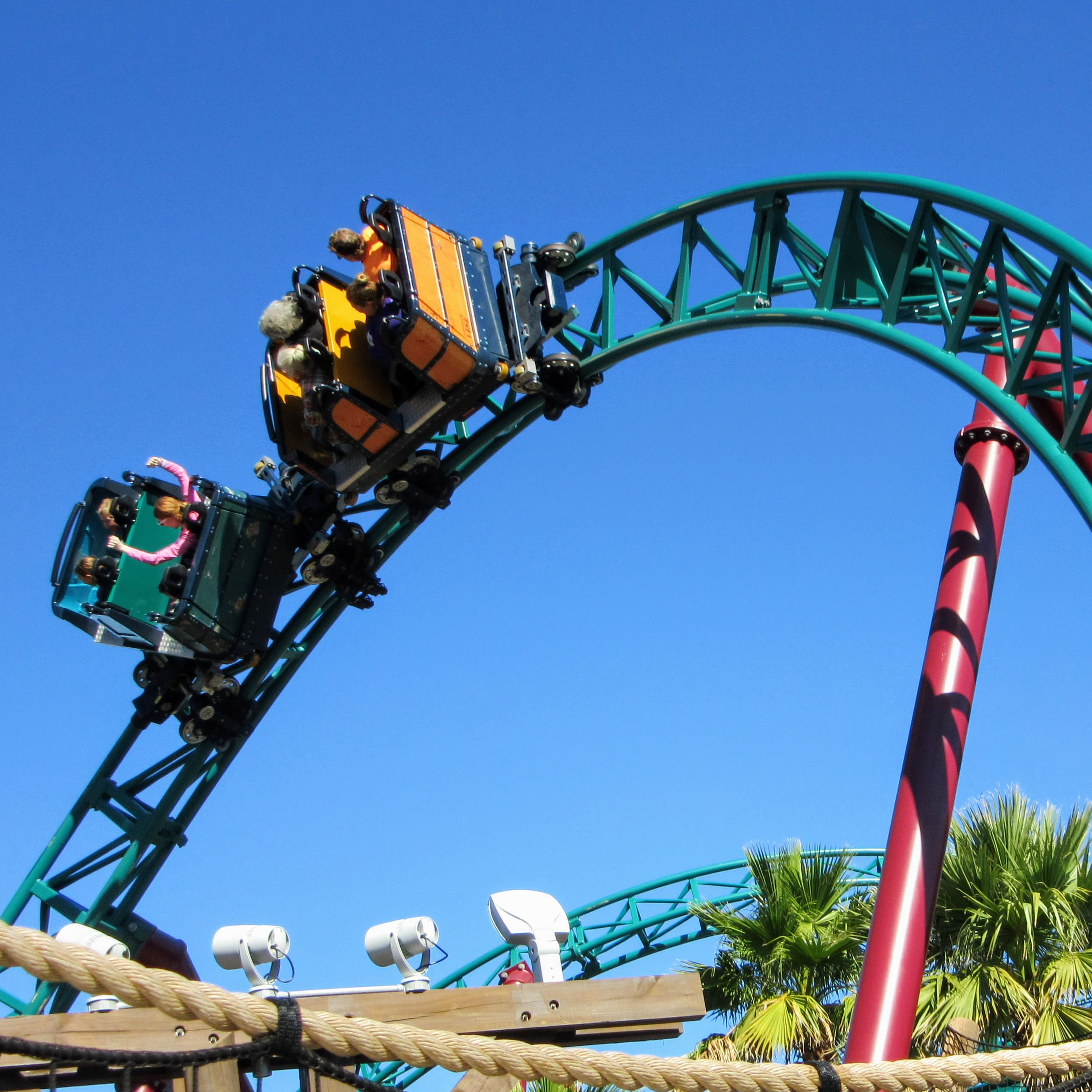 Visiting busch gardens tampa bay a review tips my meena life for Busch gardens tampa bay cobra s curse