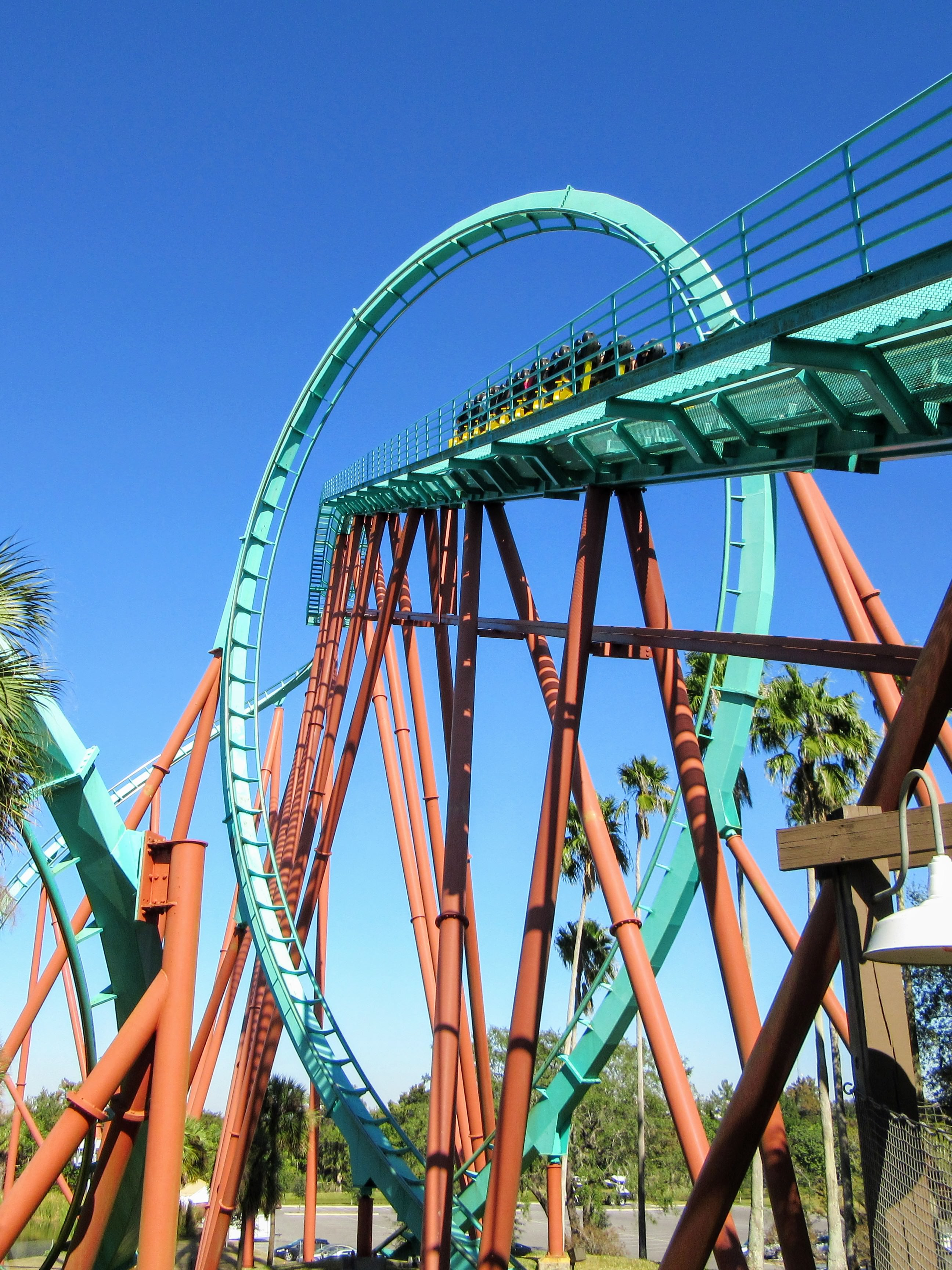 Visiting busch gardens tampa bay a review tips my - Roller coasters at busch gardens ...
