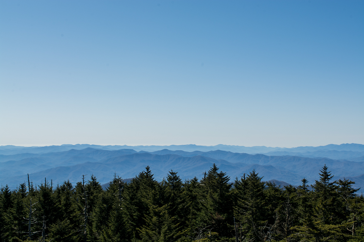 The spruce-fir forest at Clingmans Dome, North Carolina.