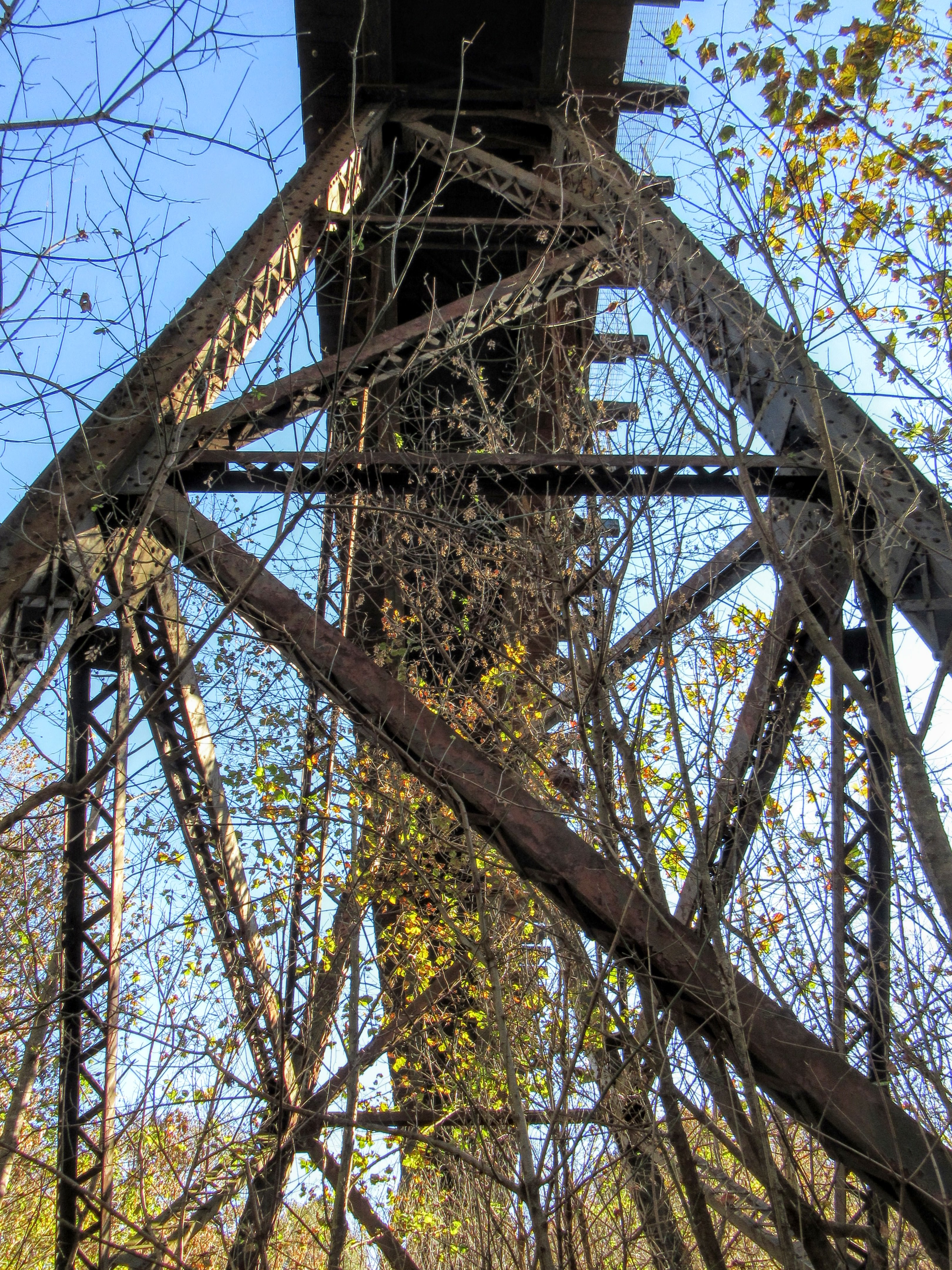 Underneath the historic railroad trestle bridge. | Hiking in Shelby, North Carolina: the First Broad River Trail.
