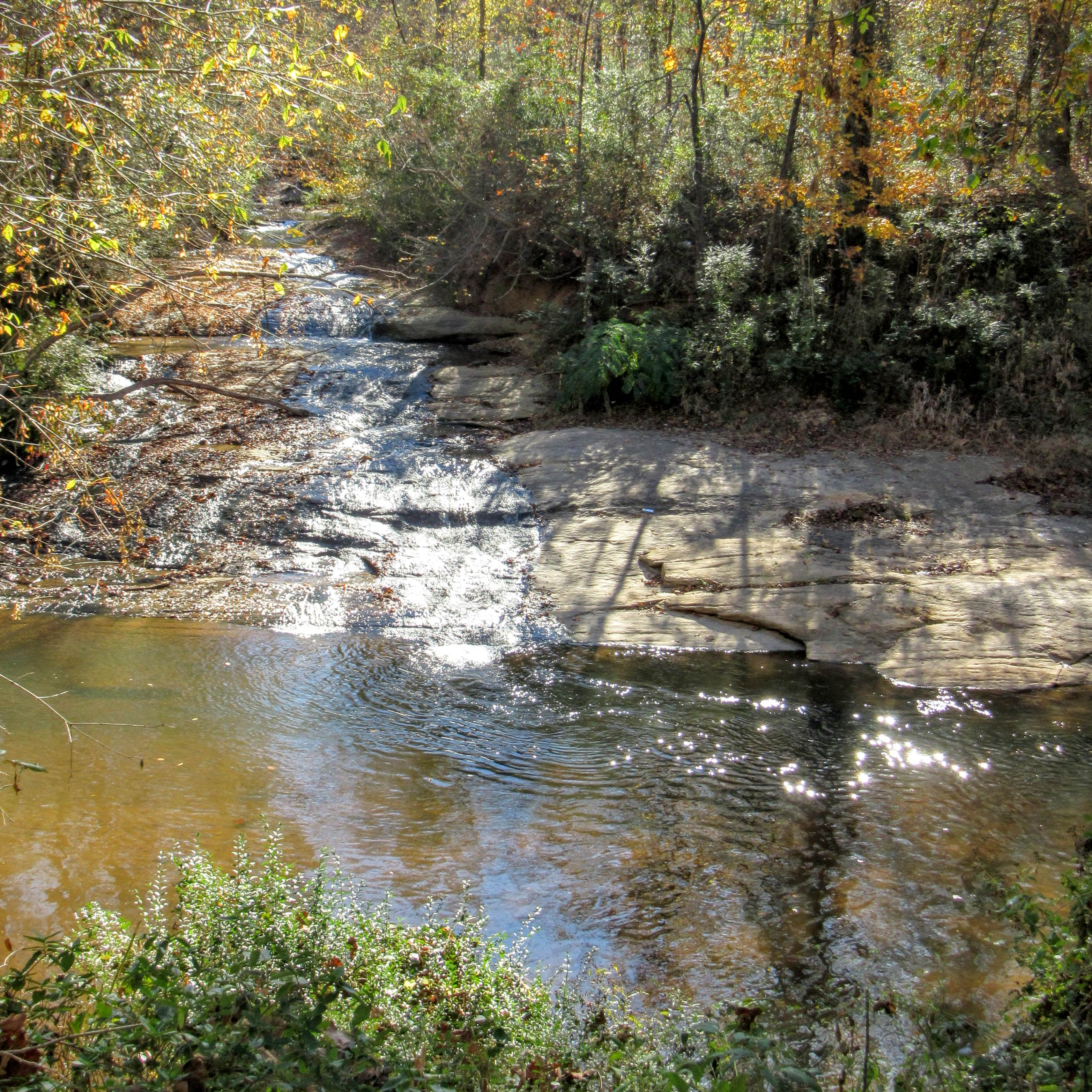 River viewing area. | Hiking in Shelby, North Carolina: the First Broad River Trail.