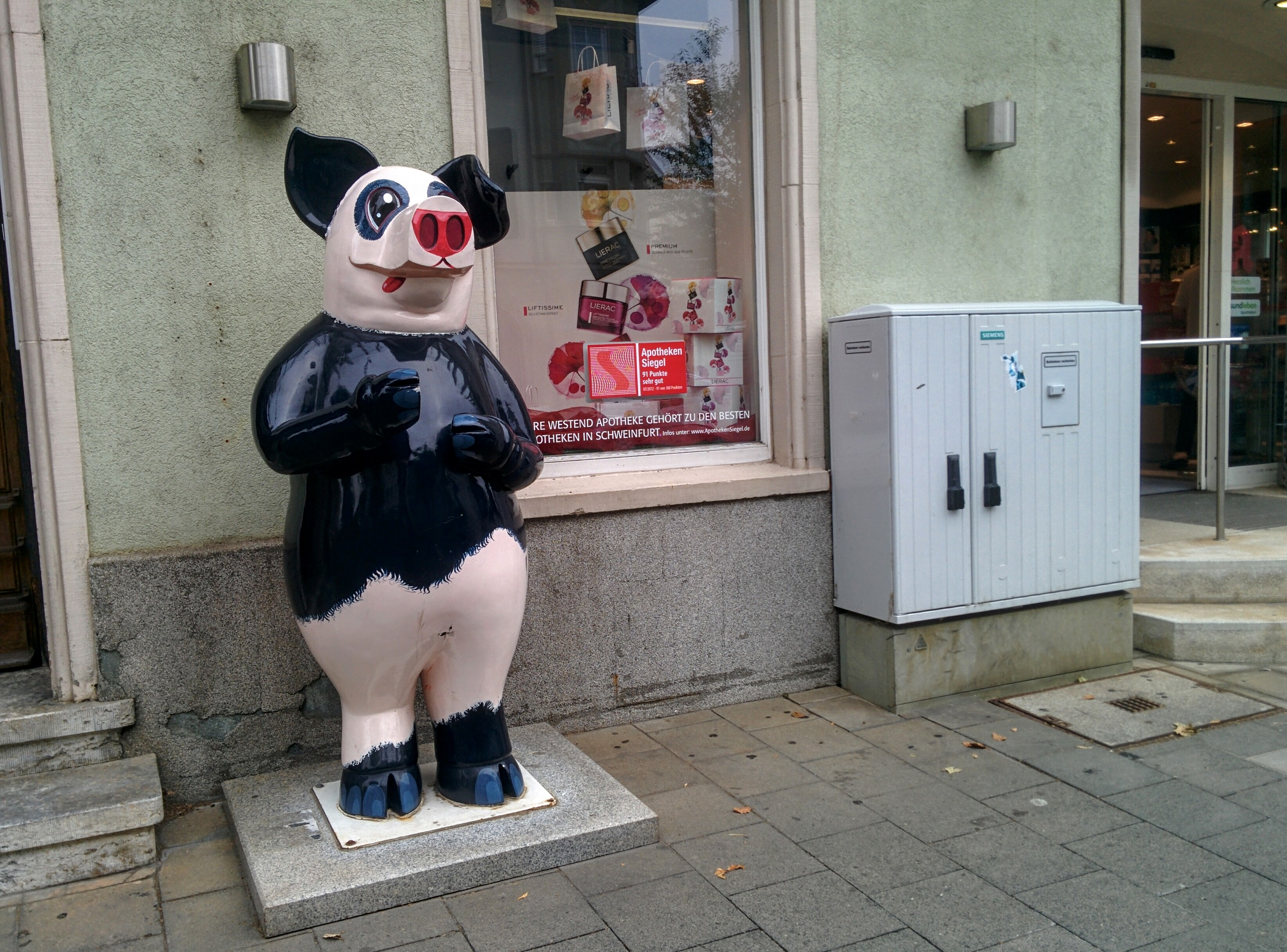 Panda pig in Schweinfurt. | A Day in the Life: Expat in Small Town Germany.