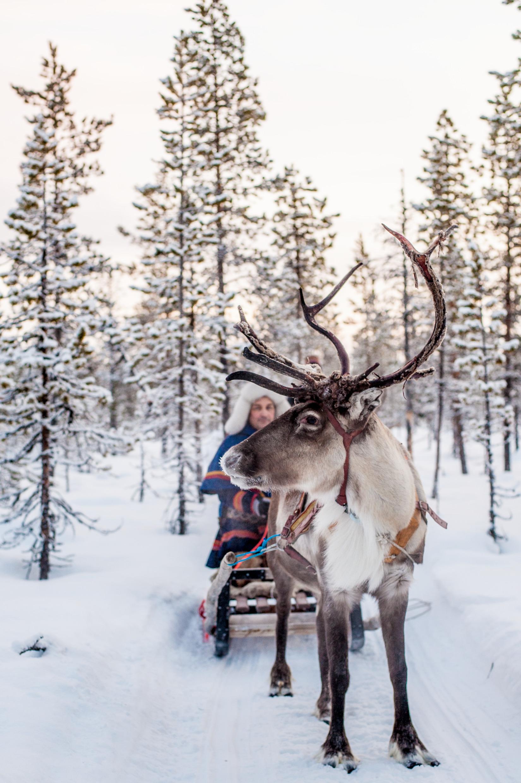 10 Reasons Why Sweden Felt Like Home.   Photo by Asaf Kliger, Image Bank Sweden.