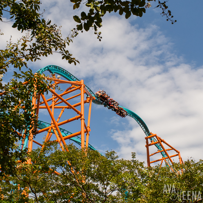 Tempesto roller coaster. | Busch Gardens Williamsburg: Ride Reviews and Tips for Visiting.