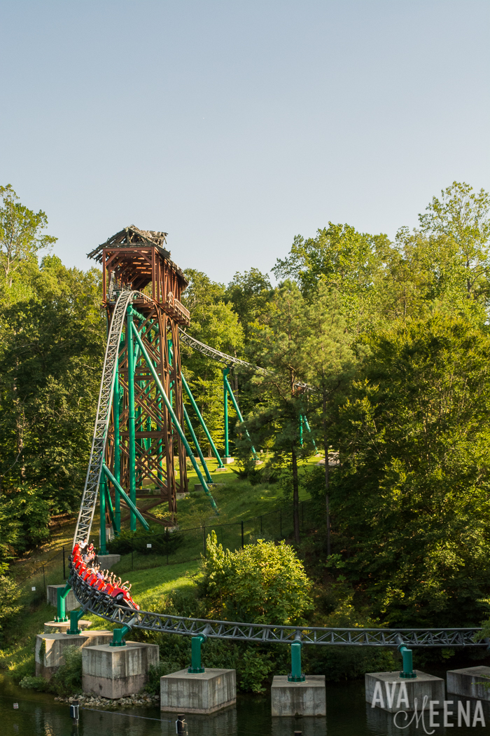 Busch gardens williamsburg ride reviews and tips for - Busch gardens williamsburg rides ...