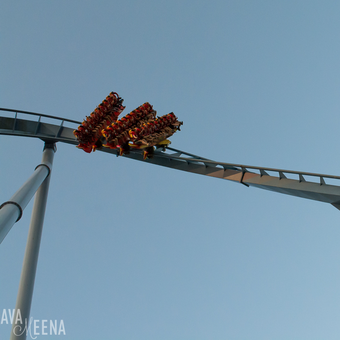 Griffon roller coaster. | Busch Gardens Williamsburg: Ride Reviews and Tips for Visiting.