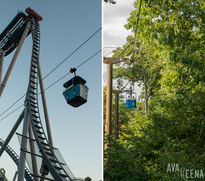 Busch Gardens Williamsburg Ride Reviews And Tips For