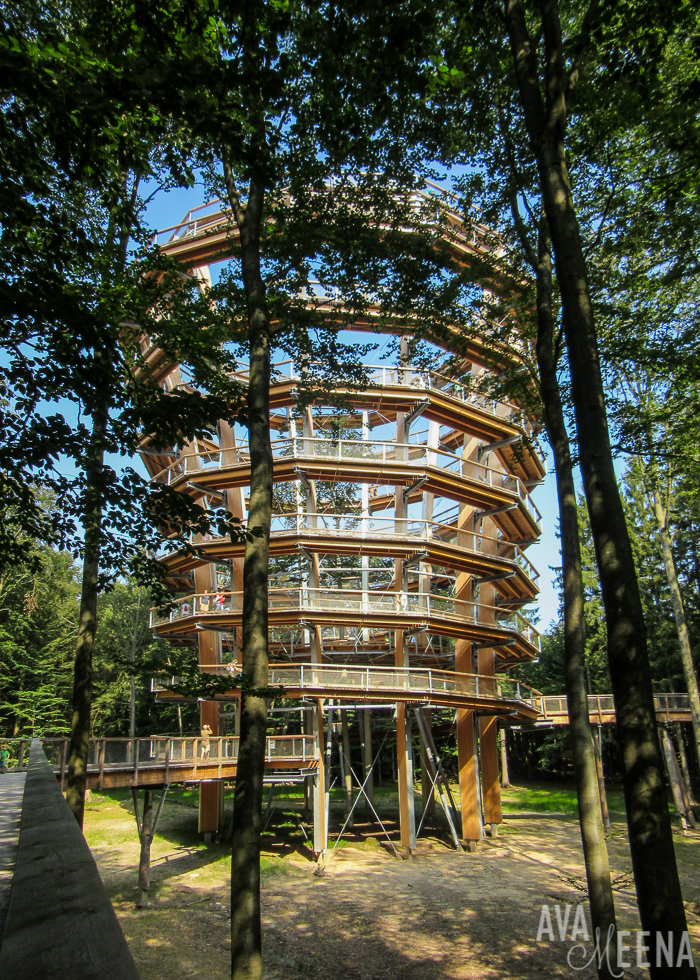 The wooden observation tower. | Visiting the Baumwipfelpfad Steigerwald in Bavaria, Germany.
