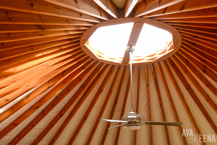 The yurt dome.